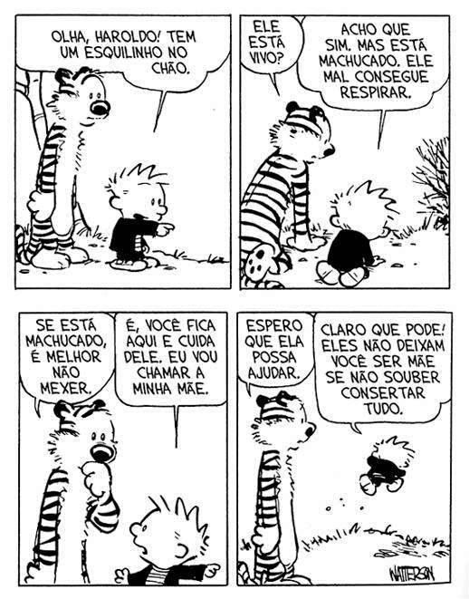 Calvin and Hobbes <3 #mae #amizade #amor