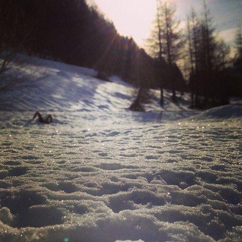 Monte Bondone (Trento, Italy)    #italy #trento #trentino #mountains #snow #trees #nature #landscape #sun #white #winter
