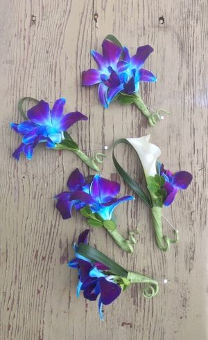 Blue dendrobium orchids and white mini-calla boutonnieres. Photo by Belle Fleur.