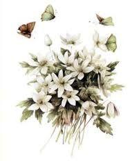 Resultado de imagen de художница Marjolein Bastin