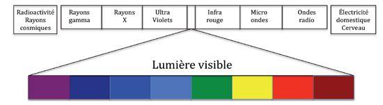Les rayonnements ionisants font partie du spectre électromagnétique tels que les ondes de téléphonie ou la lumière visible. La différence entre toutes ces ondes est leur fréquence et leur longueur d'ondes.  La fréquence (Hz) indique le niveau d'énergie de ces ondes.
