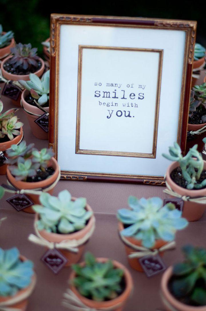succulent favors, wedding favors, wedding ideas, succulent ...