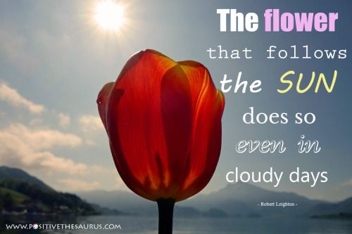 Motivational quote by Robert Leighton #positivesaurus http://www.positivethesaurus.com/2015/05/positive-words-to-describe-flowers.html The flower that follows the sun does so even in cloudy days #RobertLeighton #MotivationalQuotes #PositiveWords