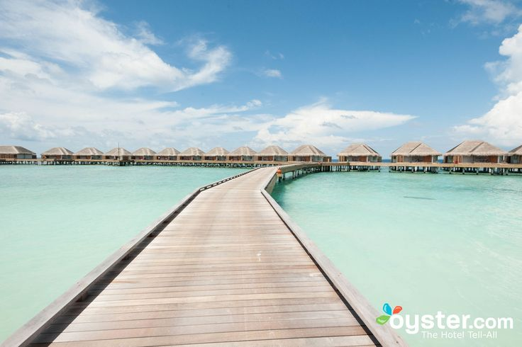 Built in 2012, this Thai-style resort is one of the best all-around luxury picks in the Maldives. Highlights include 108 attractive waterfront rooms, great food, a large infinity pool, and an excellent house reef. Dusit Thani is pricey (for good reason), but it also includes nice freebies such as snorkeling gear, kayaks, Wi-Fi, daily yoga classes, a kids' club, and in-room Nespresso machines. The resort's biggest drawback is its out-of-the-way location, at least 35 minutes from Male Airpo...