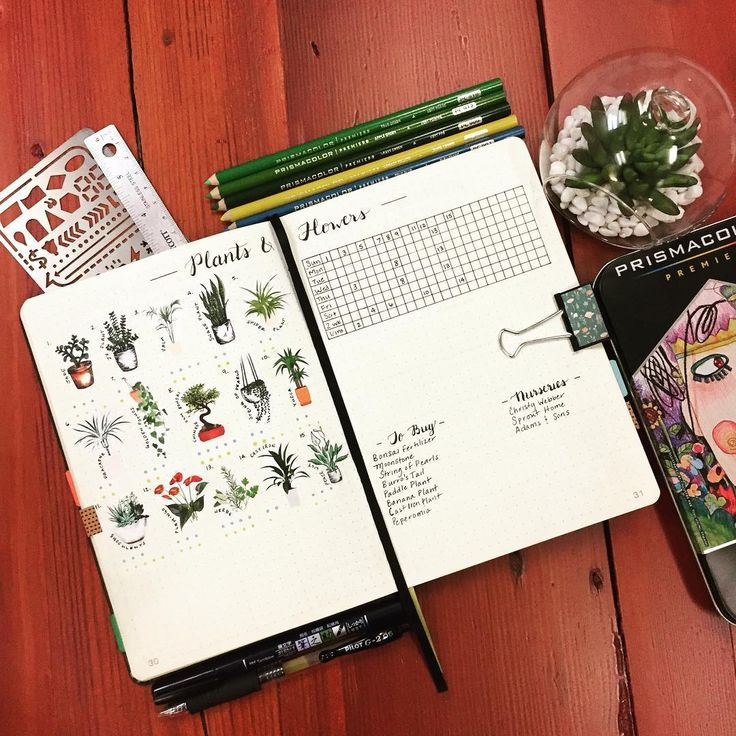 Bullet journal plant watering schedule, plant drawings. | @caseybujones