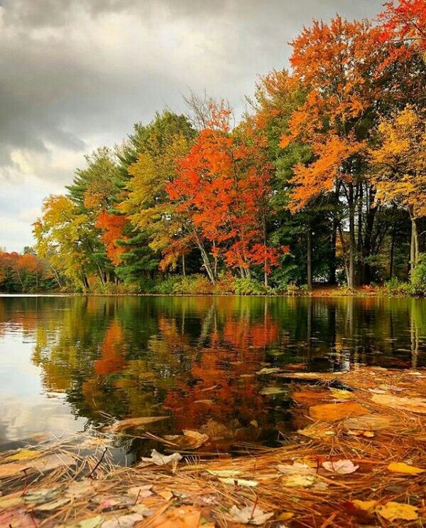 Pin By Larry Culbertson On Pictures Autumn Scenery Fall Pictures Landscape