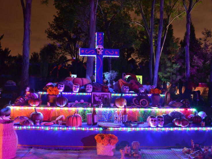 En todos santos, además de reencontrarte con los muertos, hazlo con la naturaleza en el Parque Ecológico Xochitlael cual ofrecerá act