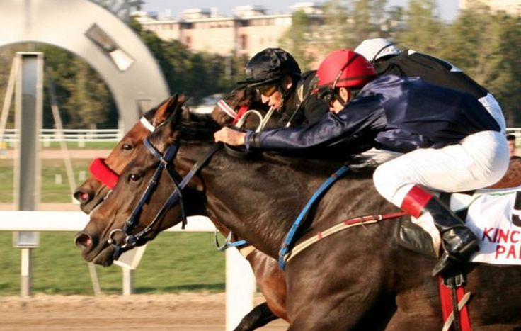 Horse racing in Budapest!