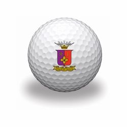 Sigma Phi Epsilon Golf Balls SALE $15.95. - Greek Clothing and Merchandise - Greek Gear®