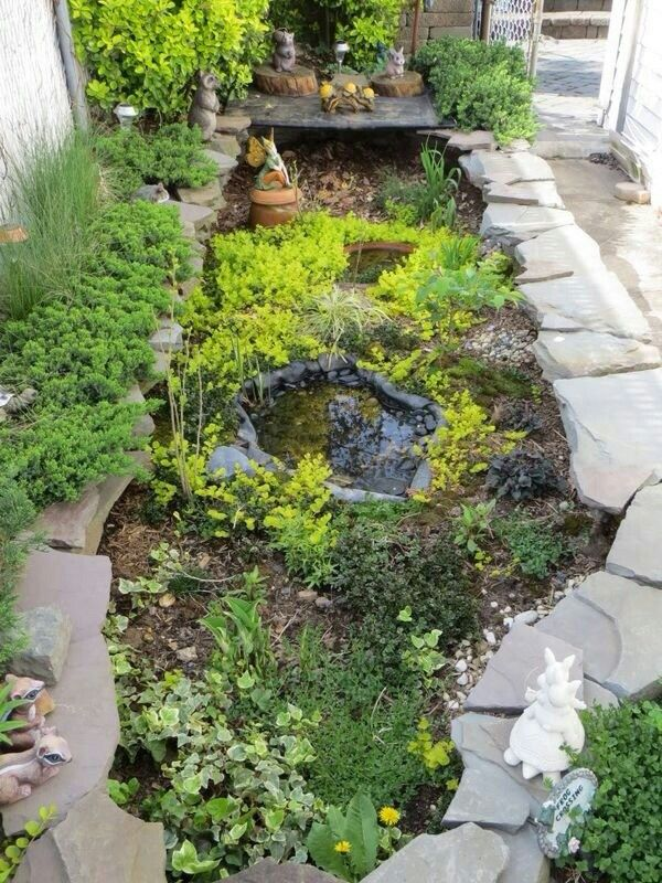 Turtle garden. 22 ft. by 6 ft. Hibernation cave 3 ft. deep filled with leaves and pine hay,. Small pond and various plants. This is a Spring picture before the plants have grown and established.