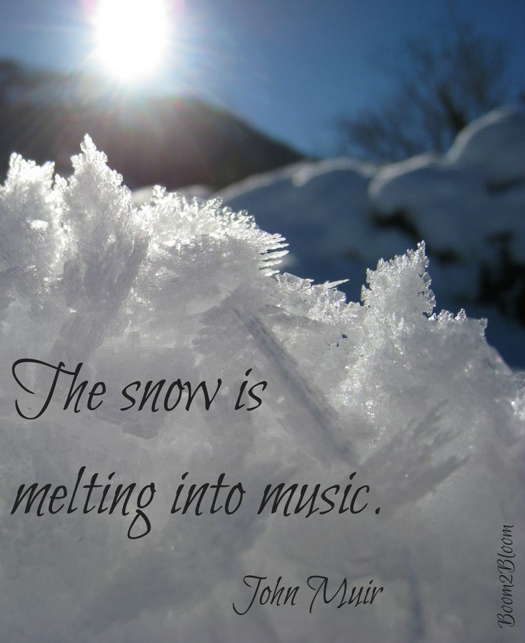 The snow is melting into music. Quote by John Muir. Nature Quotes. #Nature #NatureQuotes #JohnMuir #JohnMuirQuotes #Quotes #Winter #Snow #Music