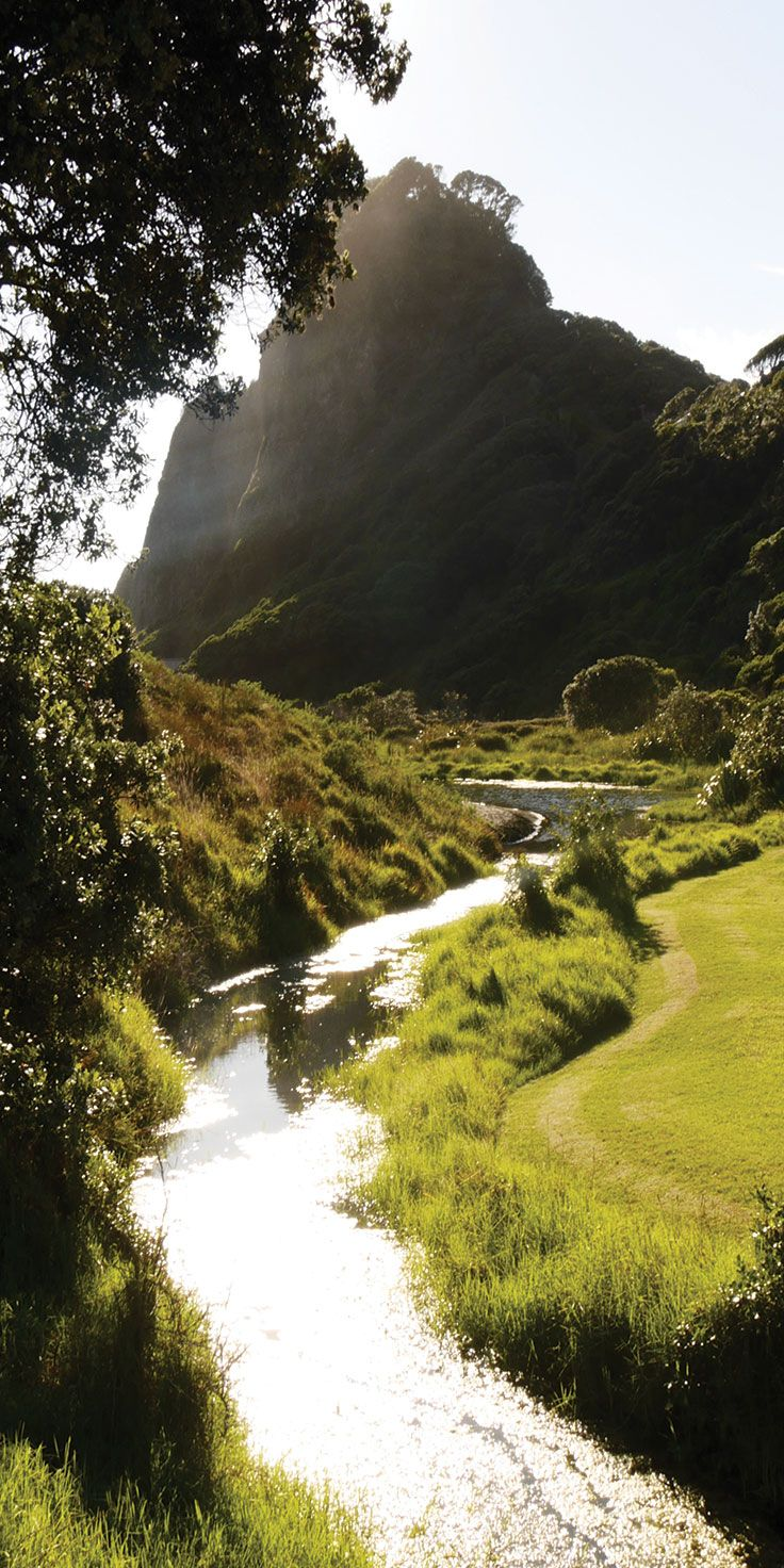 Picturesque surrounds near Karekare Falls, Auckland