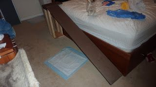 How To Build A Dog Ramp To The Bed For Your Puppy Or Small