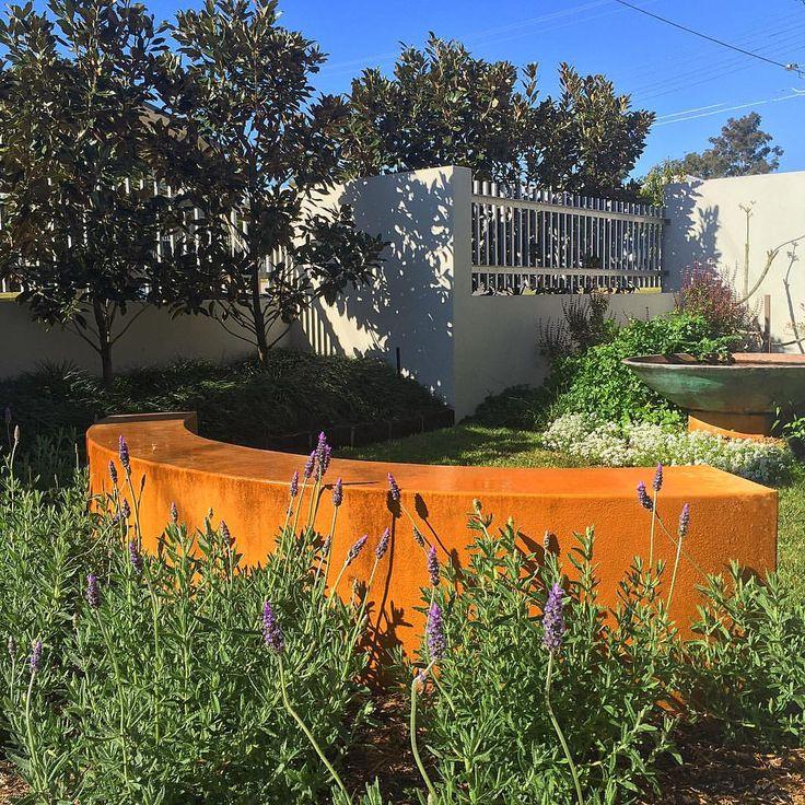 Carina courtyard.  #lavender #porterspaint #smallgarden #courtyard #magnolia #gardendesign #Brisbane #brisbanegarden #landscapedesign #landscapingbrisbane #gettingreadyforspring #outdoorliving