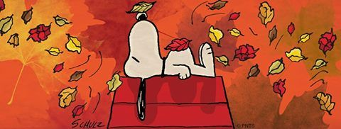 Fall is here... Snoopy