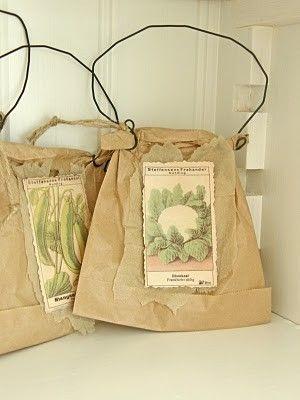 pacchetti di semi di ursula