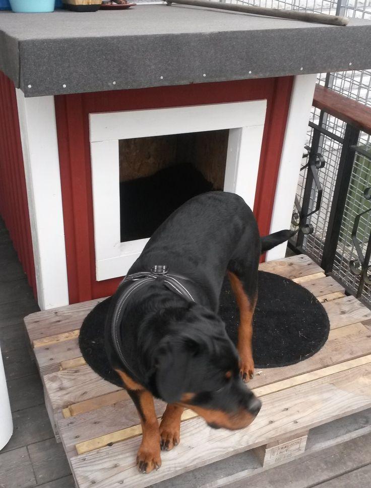 You Design We Build  your Dog Kennel / Hundkoja Hundkoja Kung … Kungsvägen Rosersberg