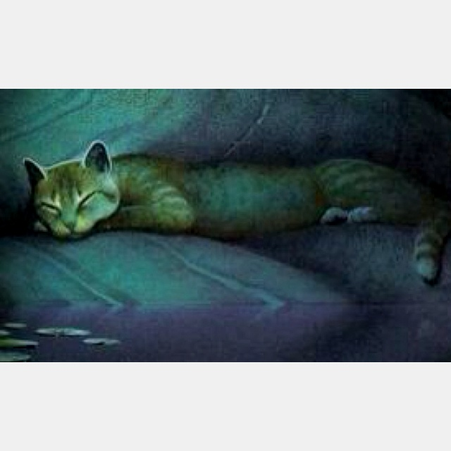 170 Best Warrior Cats Images On Pinterest