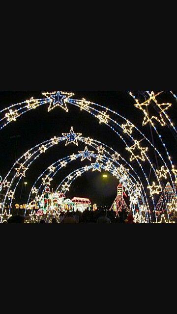 Christmas lights                                                                                                                                                                                 More