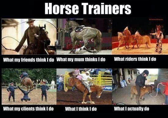 Horse Trainer Interpretations