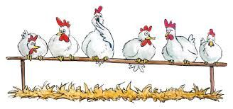 Met de kippen op stok gaan...