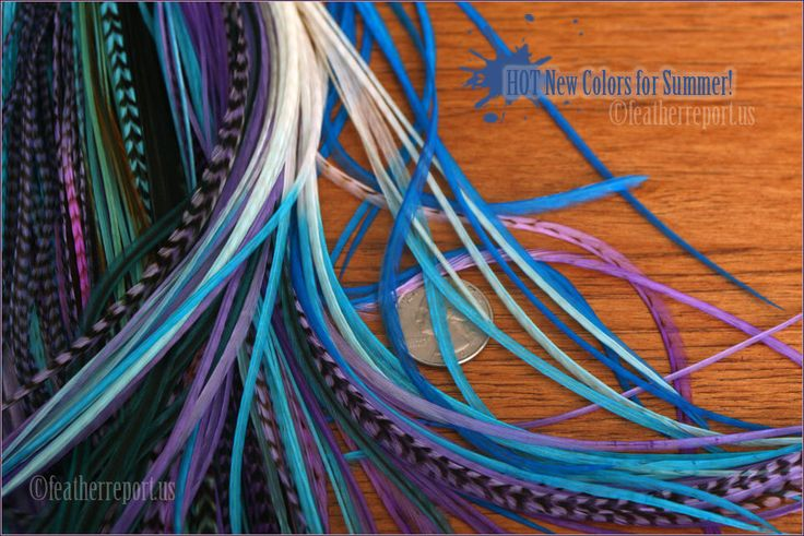 Purple Blue Teal Long Hair Feathers XL Feather Extensions Rooster Extension Plume Cheveux Extra Long Feathers for Hair Accessories, 15 pack by featherswholesale on Etsy https://www.etsy.com/listing/76890316/purple-blue-teal-long-hair-feathers-xl