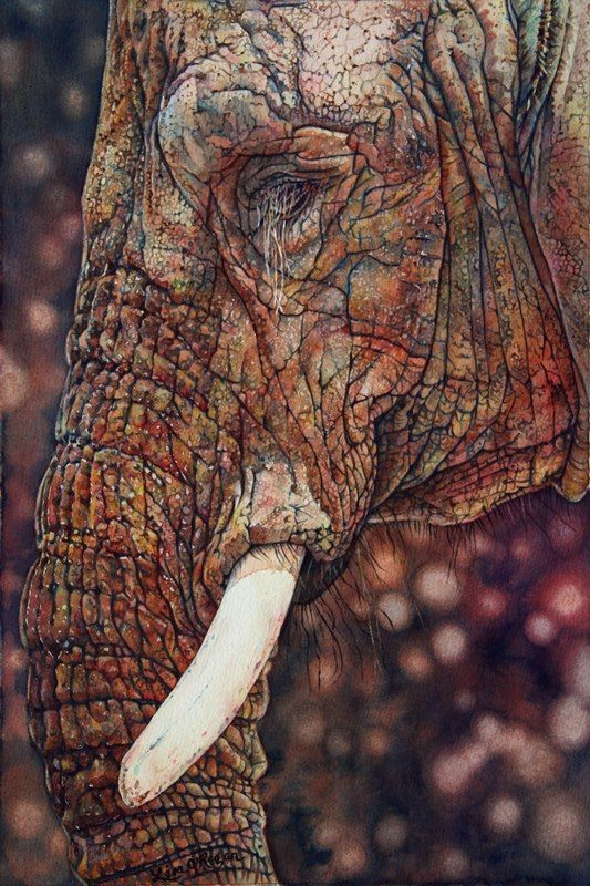 Lisa O'Regan (watercolor) absolutely beautiful... would love to own this.
