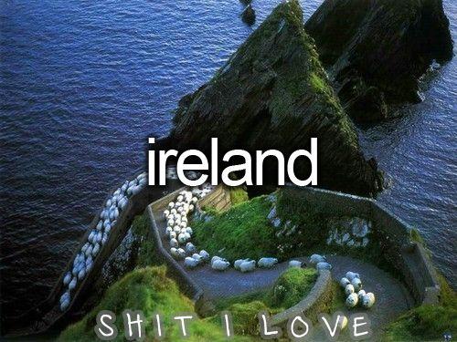 Beautiful scenery!Favorite Places, Dingle Peninsula, Dreams, Nature, Sheep Highwayireland, Beautiful Places, Amazing Places, Irish, Travel