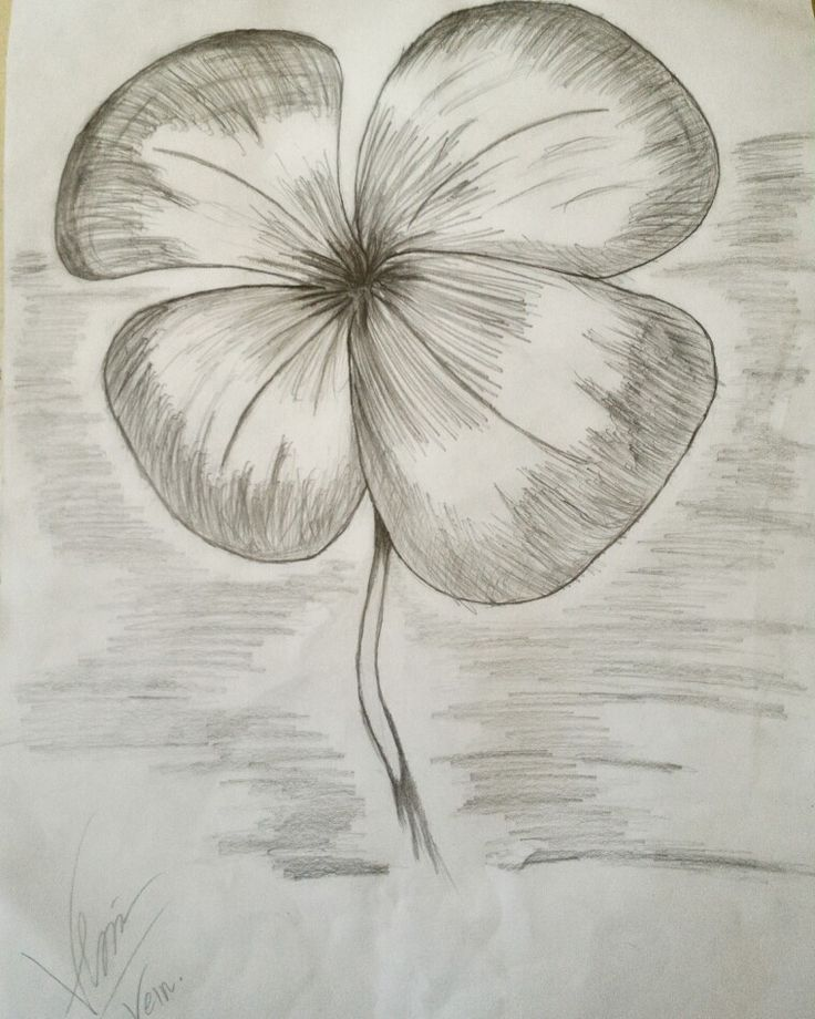 4 Leaf Clover #cloverleaf #sketch #freedrawing