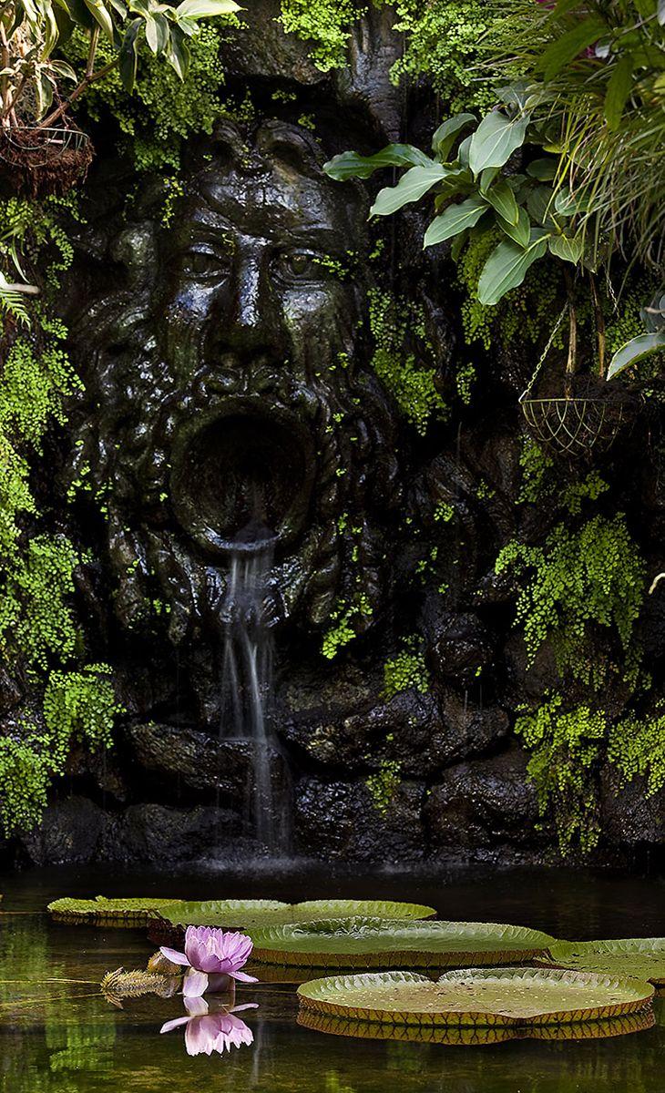 Dimora di Sir William Walton e Lady Susana Walton, oggi i Giardini La Mortella sono una meta imprescindibile per chi visita Ischia e cerca un'esperienza unica a contatto con la natura. Qui infatti coesistono diverse specie di piante e fiori provenienti da tutto il mondo! #ischia #giardinilamortella #campania #forio #imperatoretravel