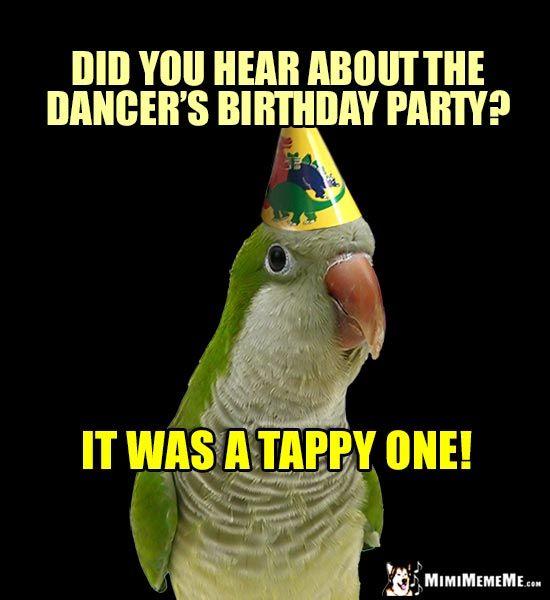 Funny Birthday Dance Meme : Best funny animal birthday memes images on pinterest