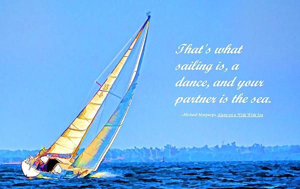 """This is a sailboat that has """"caught"""" the wind on Tampa Bay. I've included a quote from the book """"Alone on a Wide Wide Sea"""" by Michael Morpurgo"""