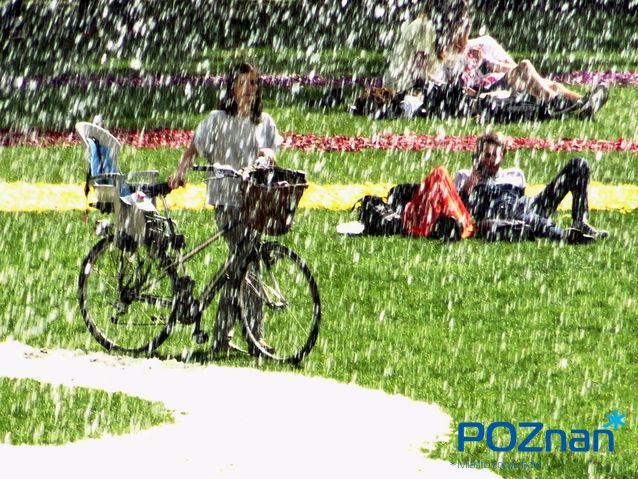 Poznan Poland, [fot. M. Cieślak]