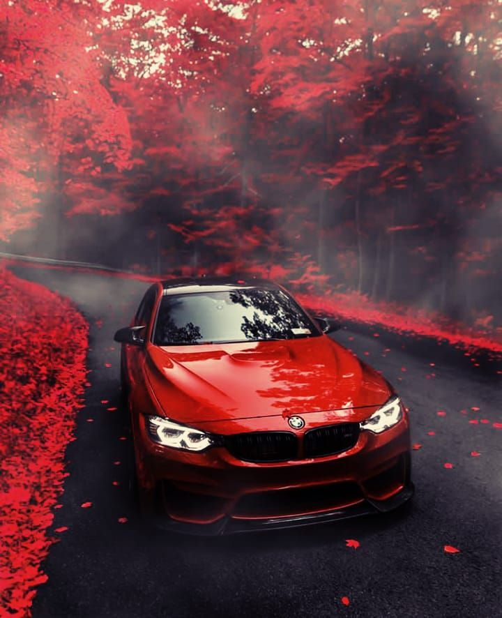 Red Car In The Amazing Red Forest With Images Bmw Bmw Wagon