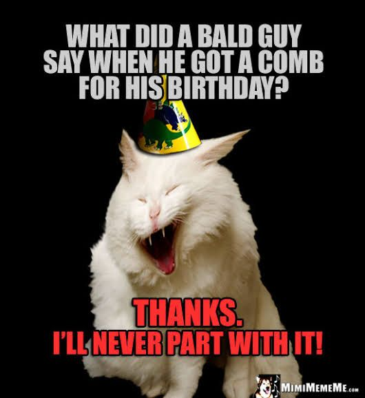 Image Result For Happy Birthday Puns Memes Birthday Quotes Funny