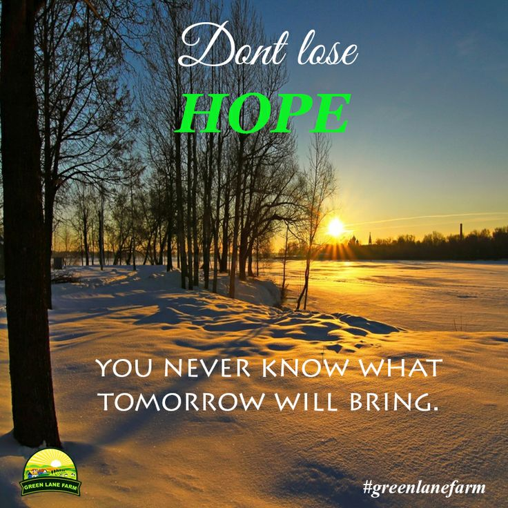 Don't lose HOPE  you never know what tomorrow will bring.  >> Like and Share if you AGREE ! Have a blessed and wonderful day everyone! #greenlanefarm #quotes #hope