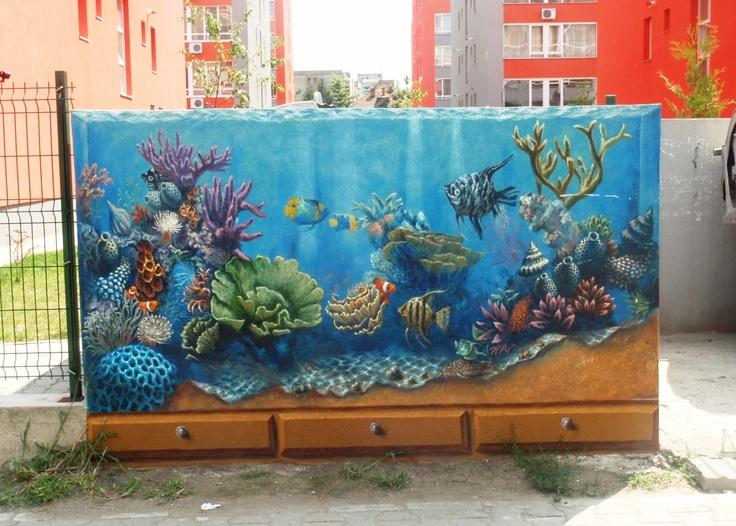 Same aquarium