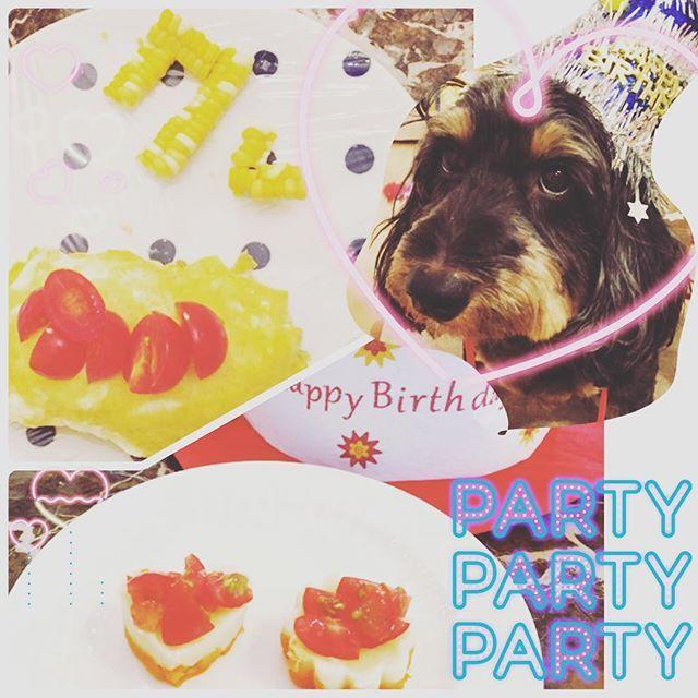 【お誕生日】 ❇︎ 今日は我が家の愛犬のお誕生日♡ 7歳になりました! ❇︎ みんなでお出かけして、 夜は子供と主人の手作り 犬用ケーキ&オムライスでお祝い。 ❇︎ まだまだ元気に長生きしてね♡ ❇︎ #お誕生日 #おめでとう #愛犬#ミックス犬
