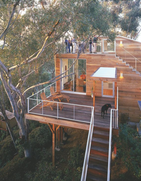Wonderful Wooden It Be Nice? Mission Hills Based Safdie Rabines Architects Built This  U201cTree