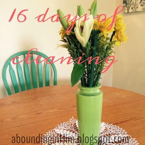 Abounding In Him: 16 Days of Cleaning