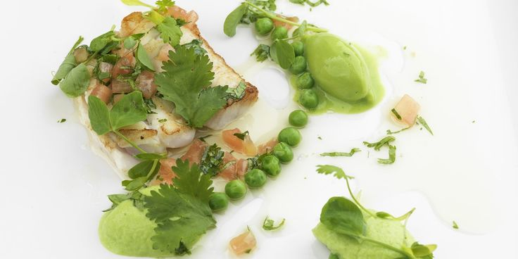 Graham Campbell pairs halibut with pea mousse, pea sorbet and sauce vierge for a freshly flavoured halibut recipe.