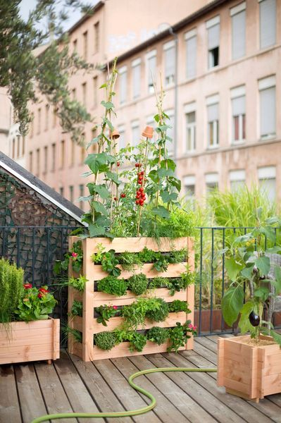 Jardin urbain contemporain ustensile jardinage mini - Potager sur balcon terrasse ...