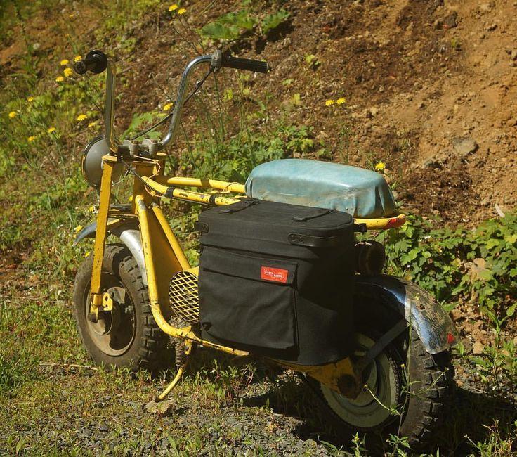 The mini bike obliges! #minibike #manyuses  via ✨ @padgram ✨(http://dl.padgram.com)