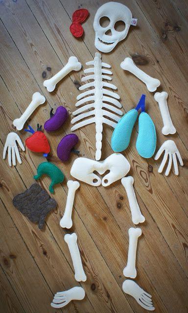 Felt skeleton for studying human body with kids