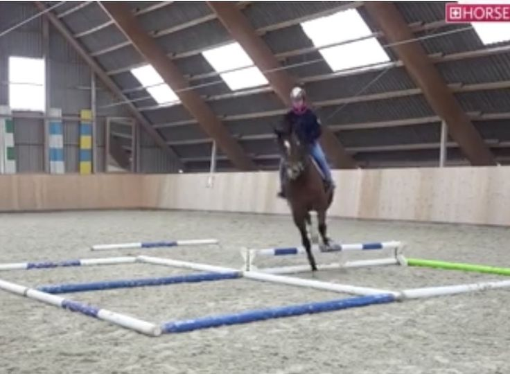 If you are not doing pole work with your horses than you are missing out on an array of helpful training exercises. Yesterday, we watched to...