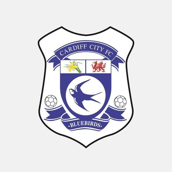 Pin On Cardiff City