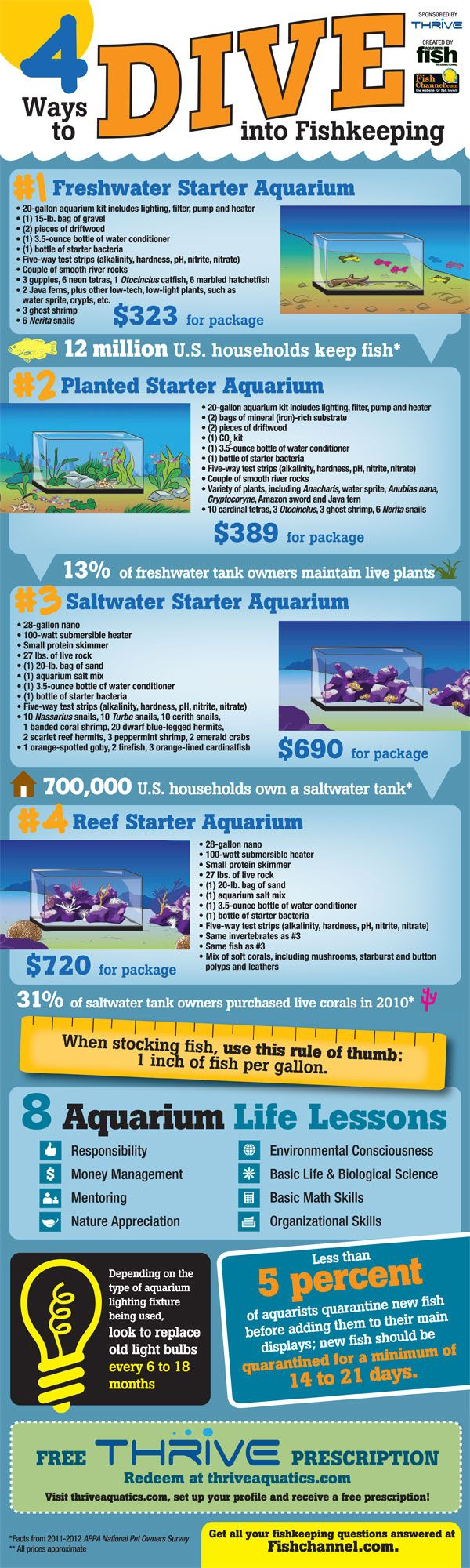 Choosing fish for your aquarium - Four Ways To Dive Into The Fishkeeping Hobby Choose The Right Aquarium Setup For Your
