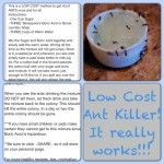 low cost ant killer recipe