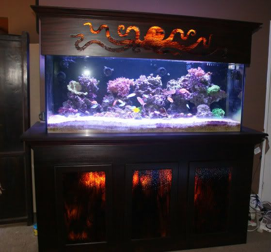 Show me your fancy stands page 35 reef central for Fancy fish tanks