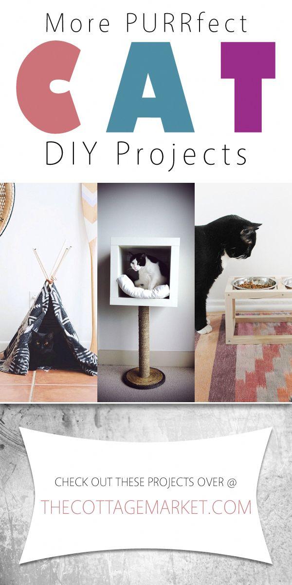 Weitere PURRfect Cat DIY-Projekte